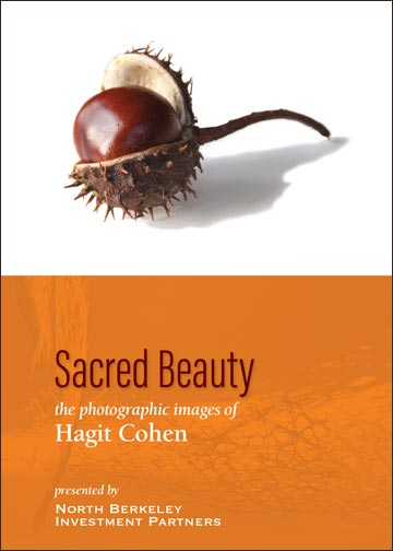 Hagit Cohen - Art at North Berkeley Wealth Management