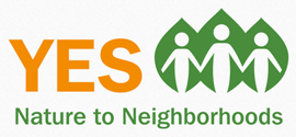 Community Engagement Partner Yes