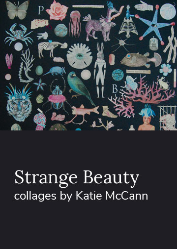 Strange Beauty Collages by Katie McCann