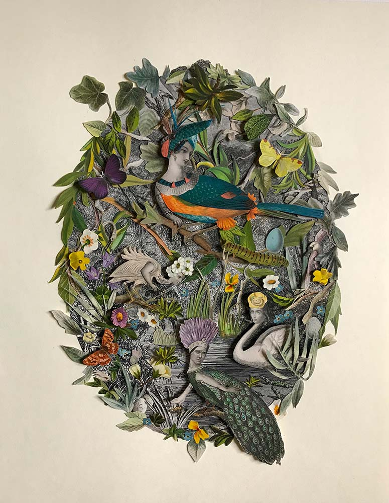 Where Are All The Queen Birds? by Katie McCann